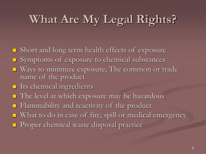 What Are My Legal Rights?