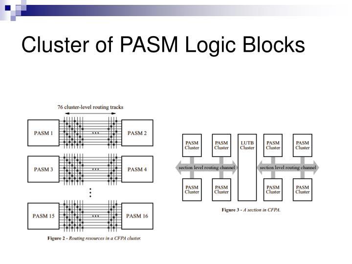 Cluster of PASM Logic Blocks