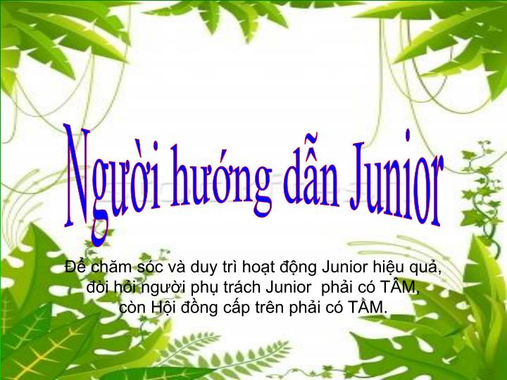 Người hướng dẫn Junior