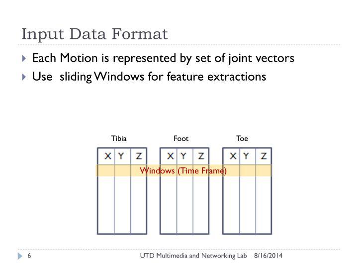 Input Data Format