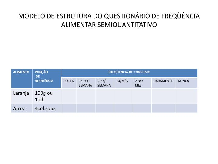 MODELO DE ESTRUTURA DO QUESTIONÁRIO DE FREQÜÊNCIA ALIMENTAR SEMIQUANTITATIVO