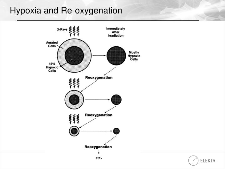 Hypoxia and Re-oxygenation
