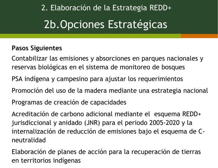 2. Elaboración de la Estrategia REDD+