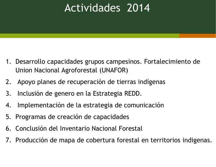 Actividades  2014