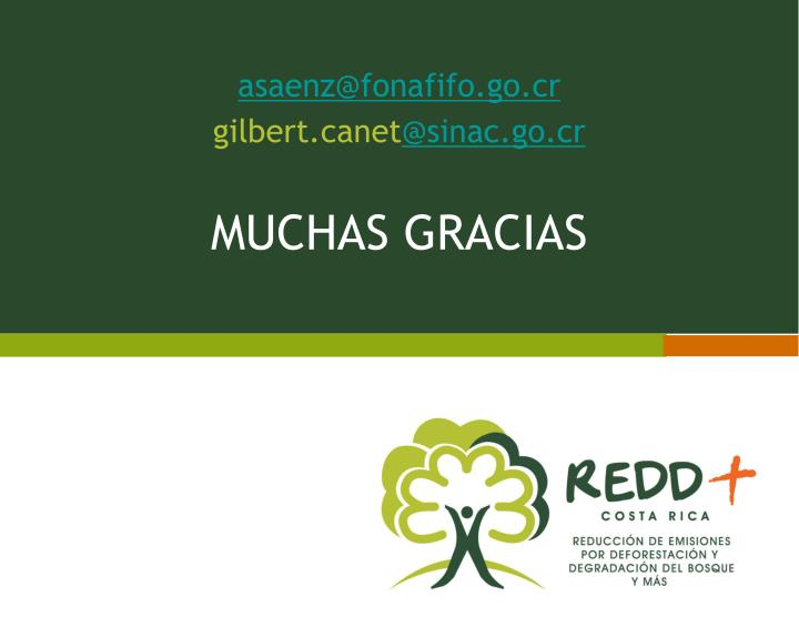 asaenz@fonafifo.go.cr