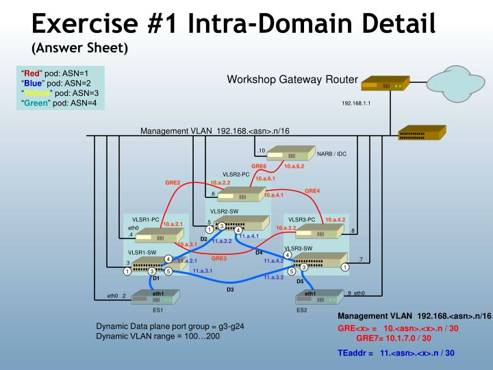 Exercise #1 Intra-Domain Detail
