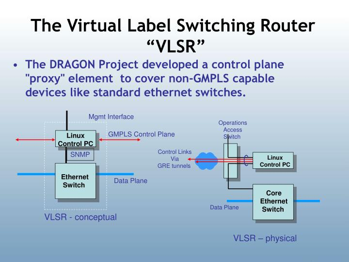 The Virtual Label Switching Router