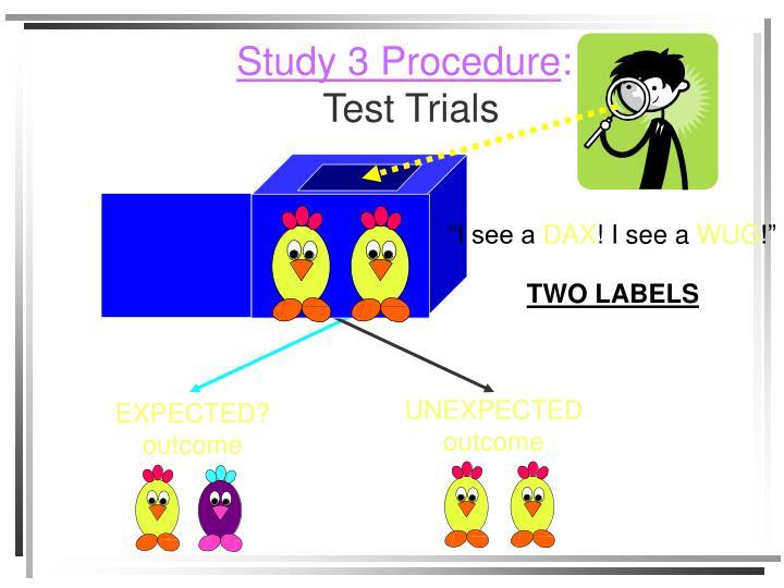 Study 3 Procedure