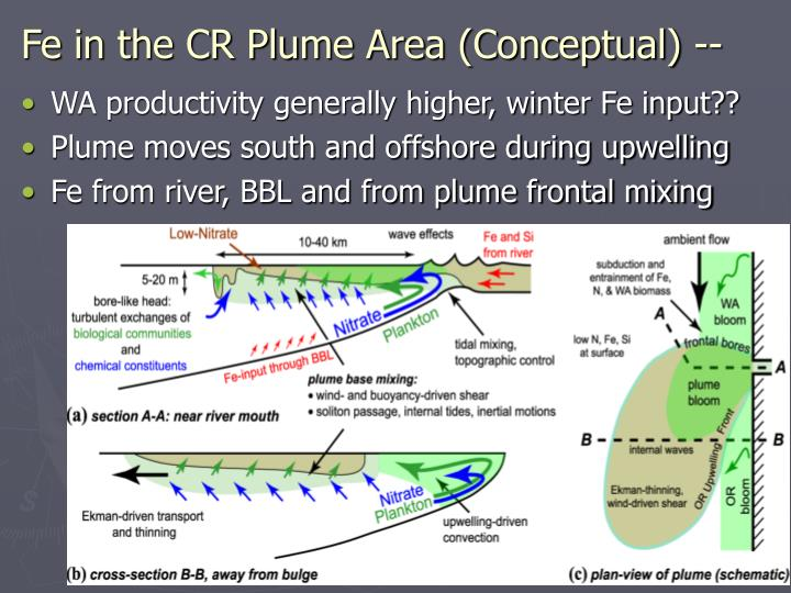 Fe in the CR Plume Area (Conceptual) --