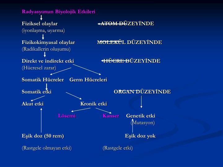 Radyasyonun Biyolojik Etkileri