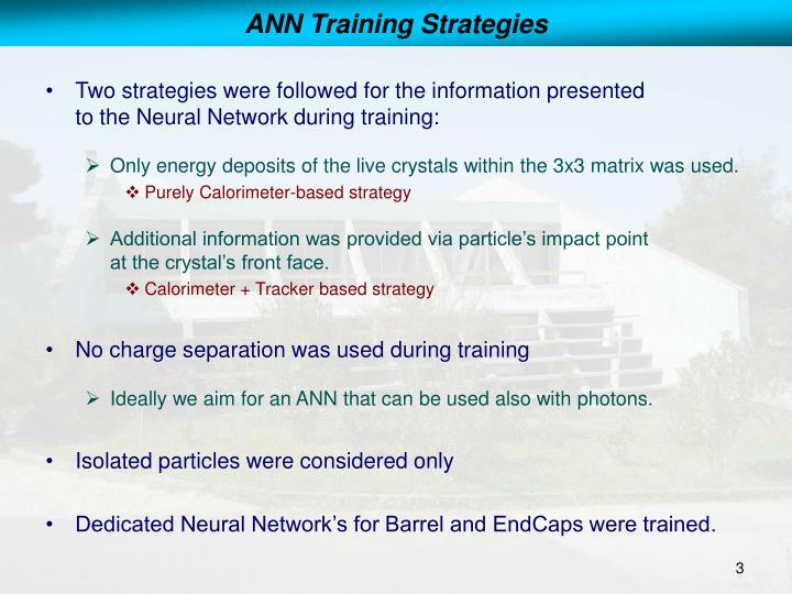Ann training strategies