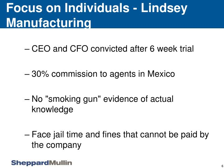 Focus on Individuals - Lindsey Manufacturing