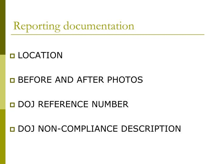 Reporting documentation