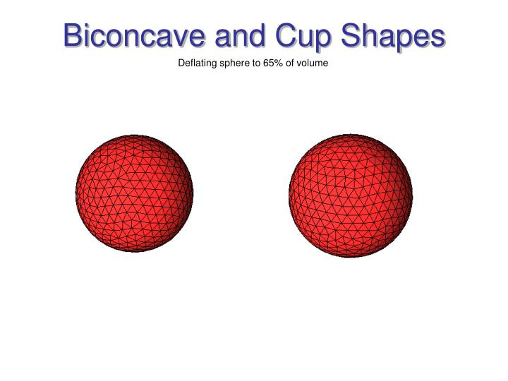 Biconcave and Cup Shapes