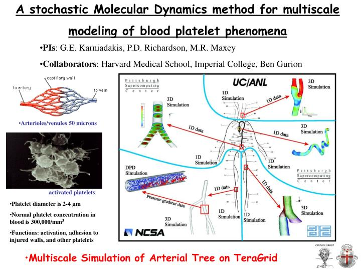 A stochastic Molecular Dynamics method for multiscale