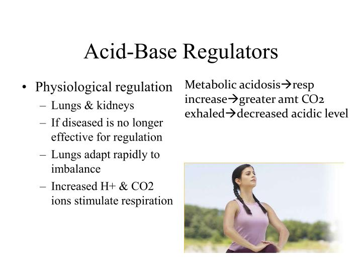 Acid-Base Regulators