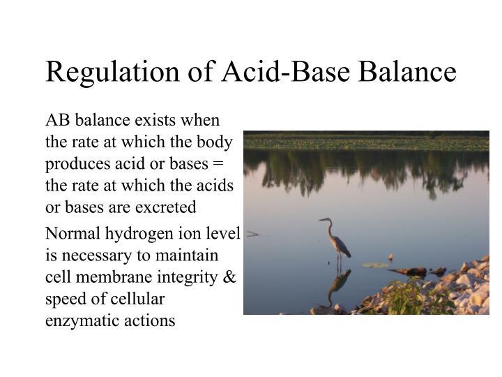 Regulation of Acid-Base Balance