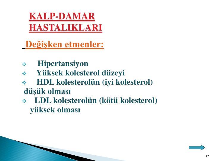 KALP-DAMAR