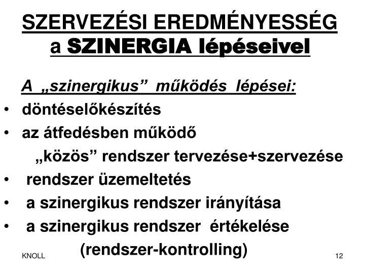 SZERVEZÉSI EREDMÉNYESSÉG