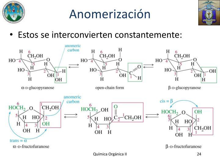 Anomerización