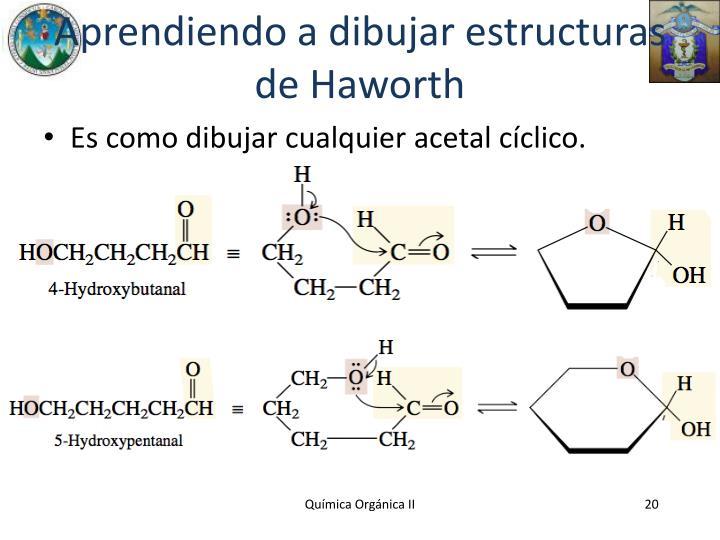 Aprendiendo a dibujar estructuras de Haworth