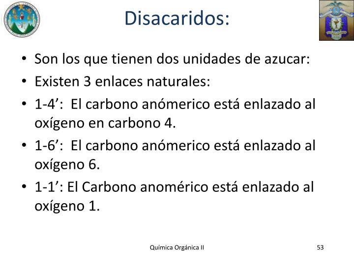 Disacaridos: