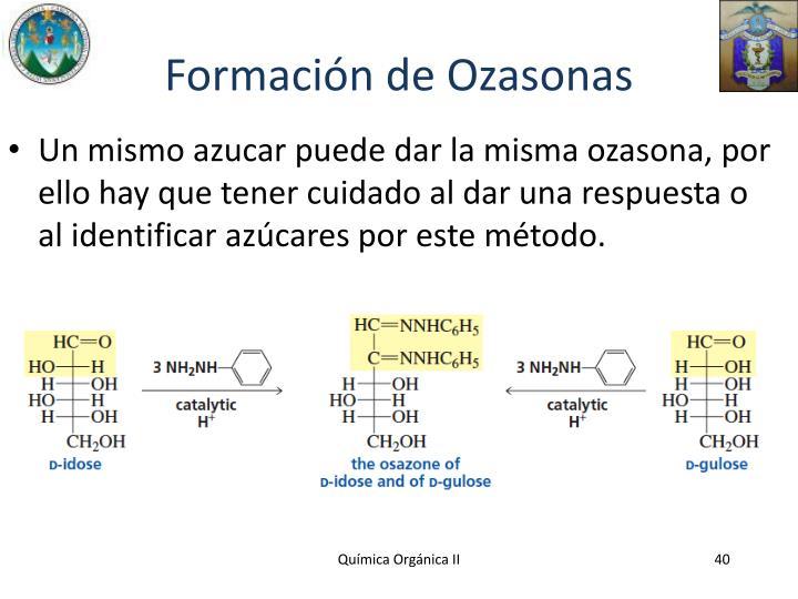 Formación de Ozasonas