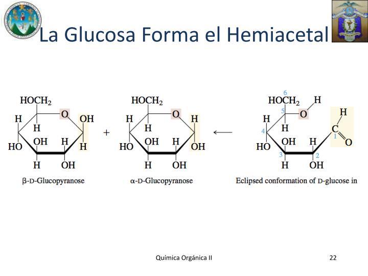 La Glucosa Forma el Hemiacetal