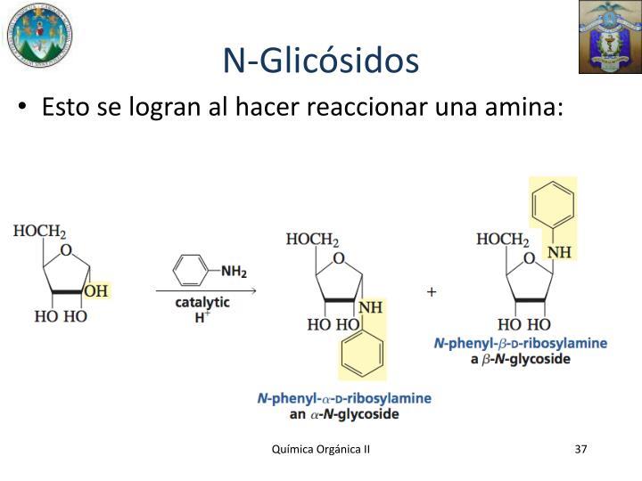 N-Glicósidos