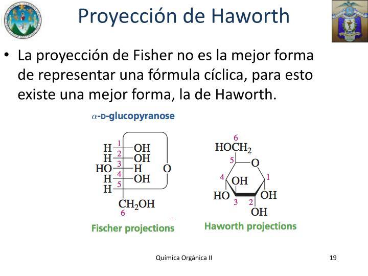 Proyección de Haworth