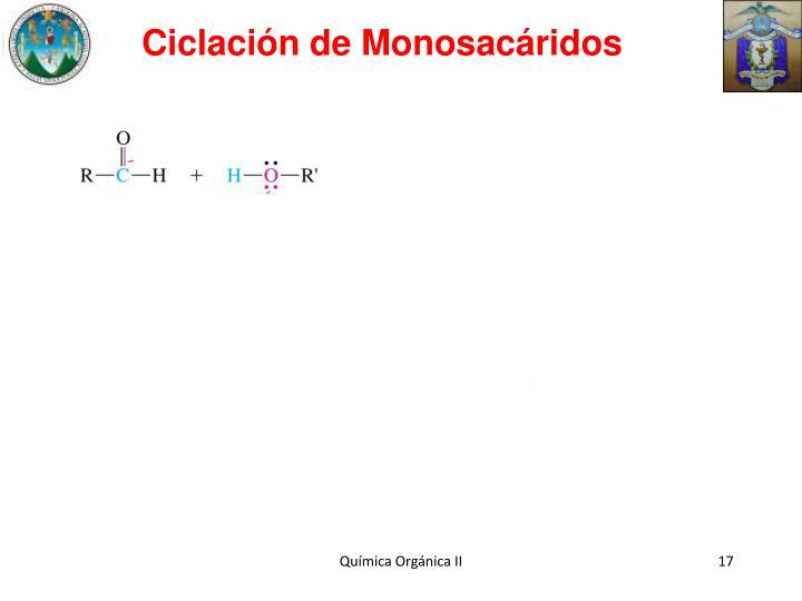 Ciclación de Monosacáridos