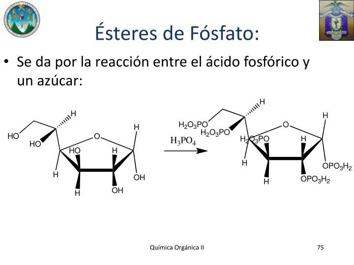 Ésteres de Fósfato: