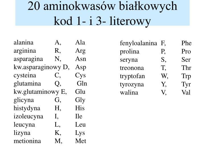 20 aminokwasów białkowych