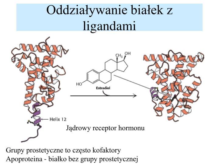 Oddziaływanie białek z ligandami