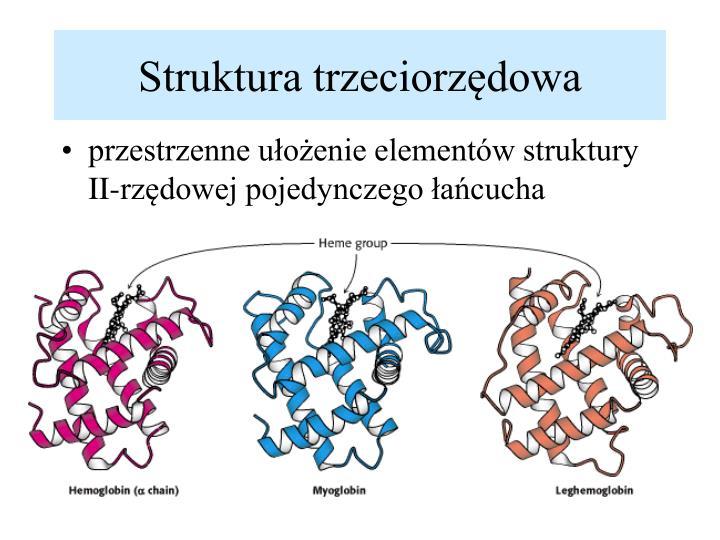 Struktura trzeciorzędowa