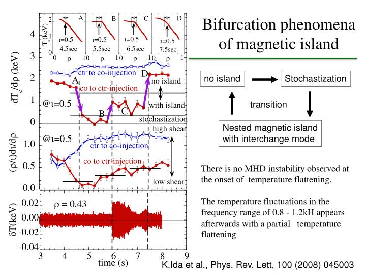 Bifurcation phenomena of magnetic island