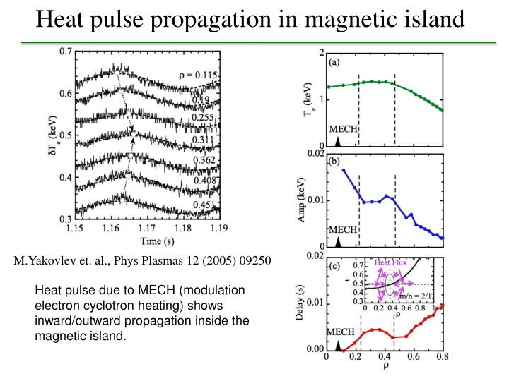 Heat pulse propagation in magnetic island