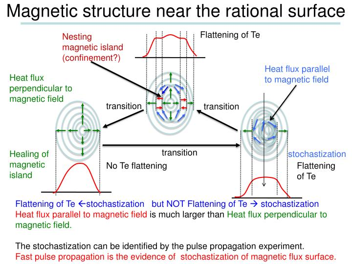 Magnetic structure near the rational surface
