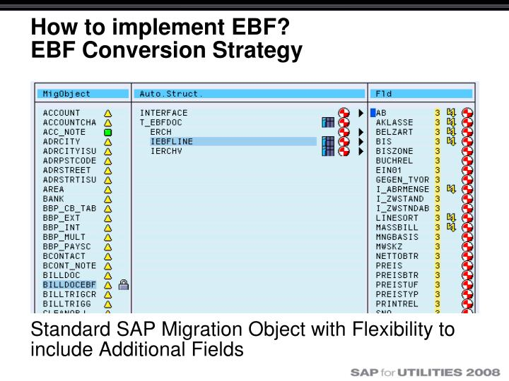 Sap data conversion strategy document