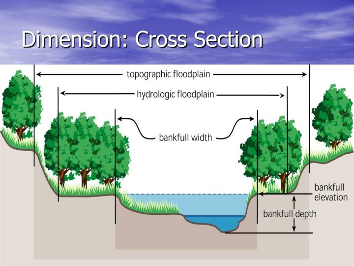 Dimension: Cross Section