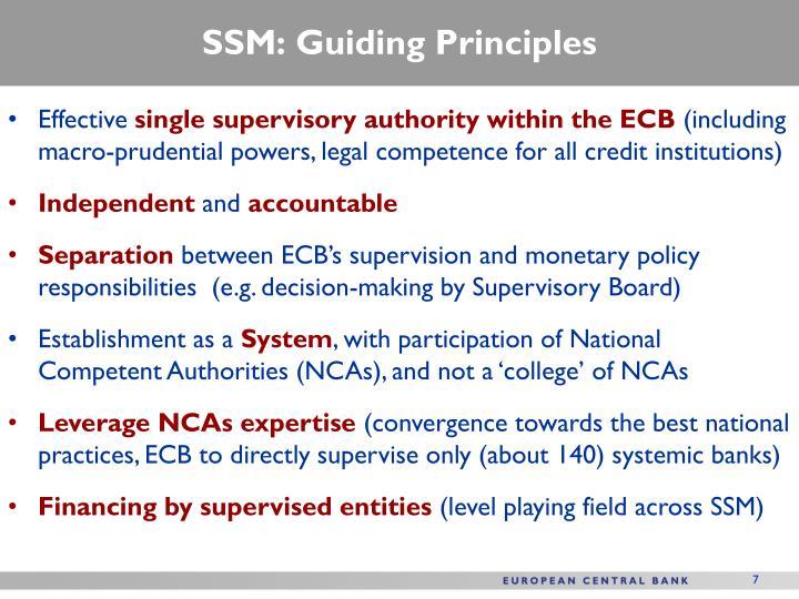SSM: Guiding Principles