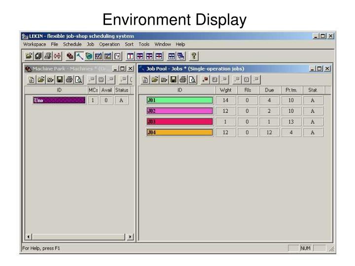 Environment Display