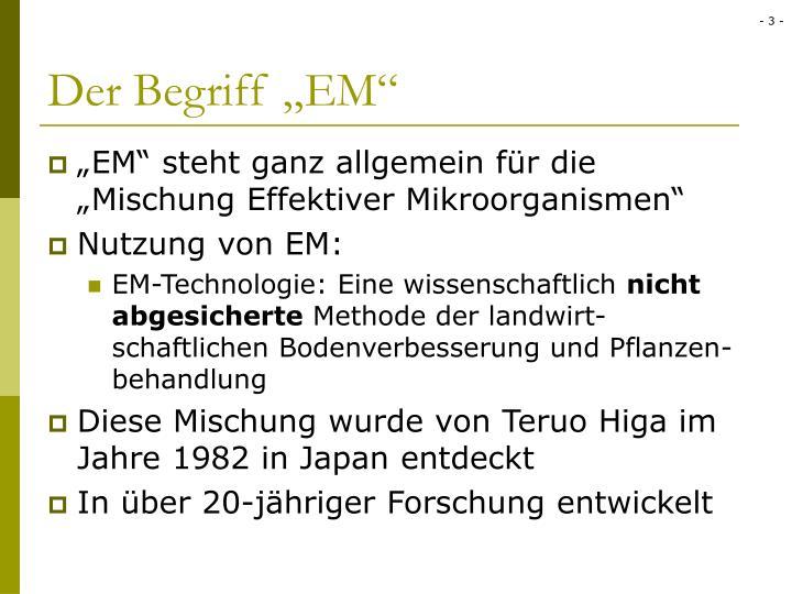 """Der Begriff """"EM"""""""
