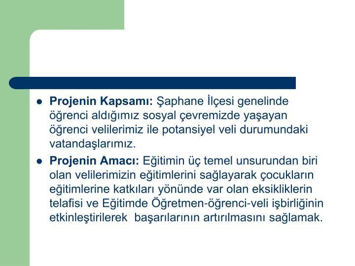 Projenin Kapsamı:
