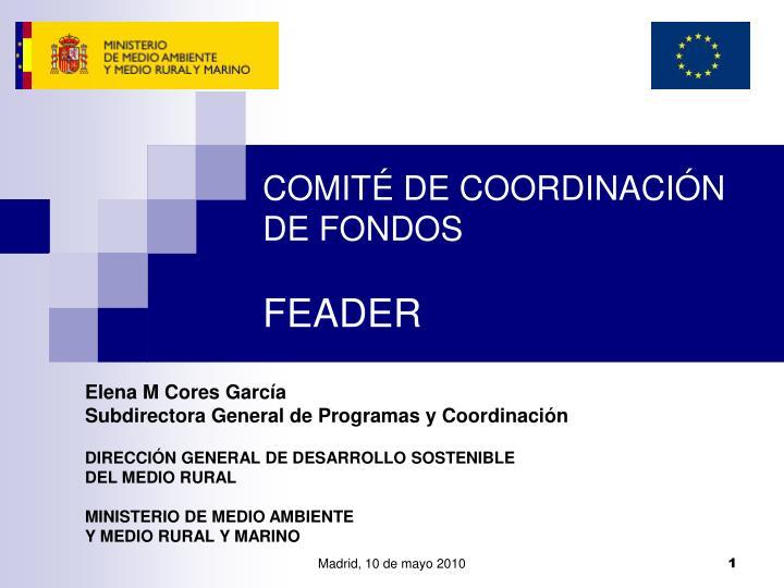 COMITÉ DE COORDINACIÓN DE FONDOS
