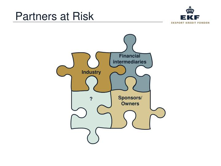 Partners at Risk