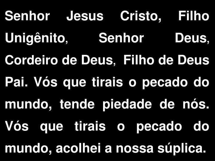 Senhor Jesus Cristo, Filho Unignito