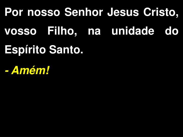 Por nosso Senhor Jesus Cristo, vosso Filho, na unidade do  Esprito Santo.