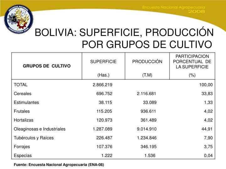 BOLIVIA: SUPERFICIE, PRODUCCIÓN    POR GRUPOS DE CULTIVO