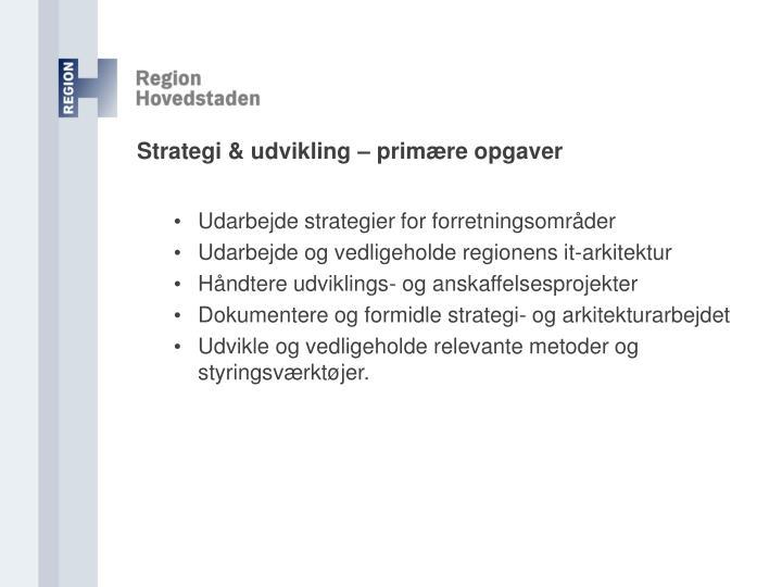 Strategi & udvikling – primære opgaver